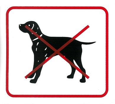 Kutyával belépni tilos 110x90mm – matrica 120115