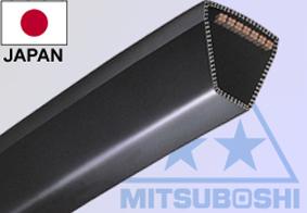 MENET ÉKSZíJ FŰNYÍRÓHOZ Z34,5Z34,5 szerokość 10mm długość wewnętrzna Li 875mm długość ze 19-06010